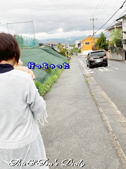 011dIMG_5520IMG_.jpg