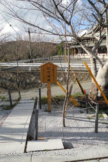 2018年12月24日15宮地嶽神社