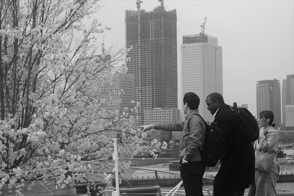 横浜寸景-79_R