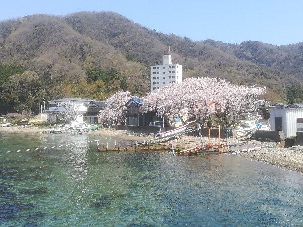 akasaki-sakura-020.jpg