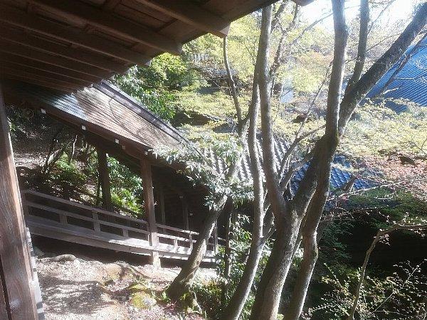 eikandou-kyoto-060.jpg