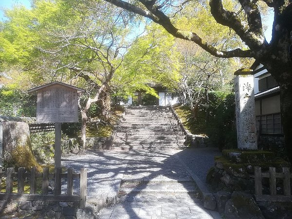 hounenin-kyoto-033.jpg