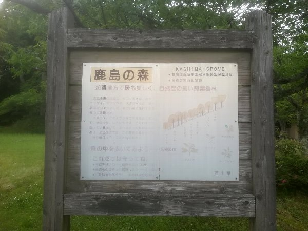 kashimanomori-kaga-003.jpg