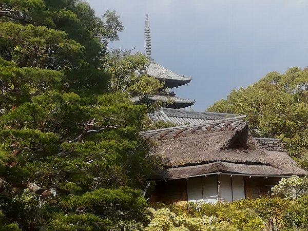 ninnaji-kyoto-051.jpg