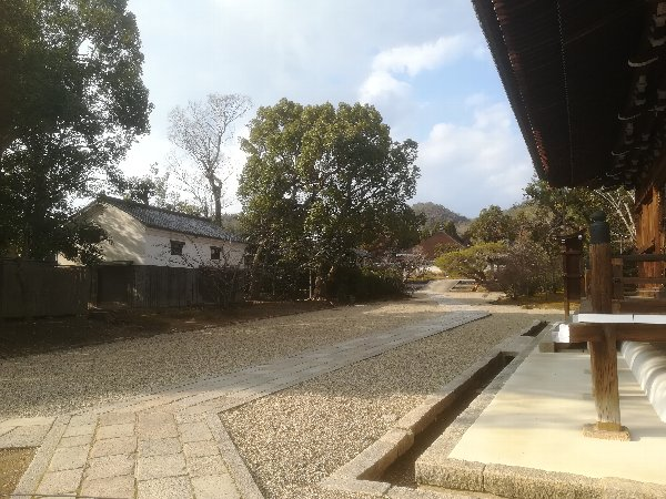 ninnaji-kyoto-116.jpg
