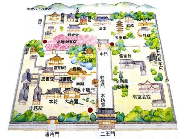 ninnaji-kyoto-122.jpg