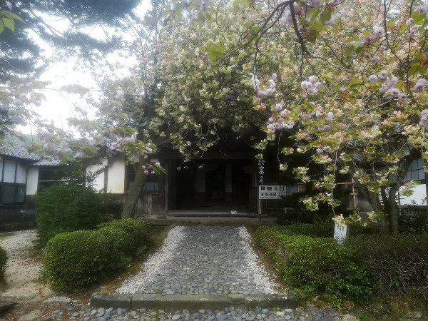 saifukugi2-tsuruga-071.jpg