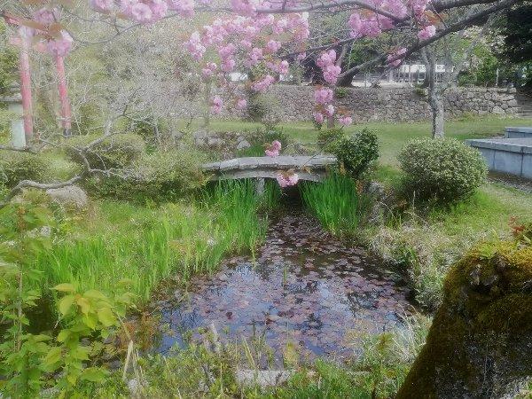 saifukugi2-tsuruga-099.jpg