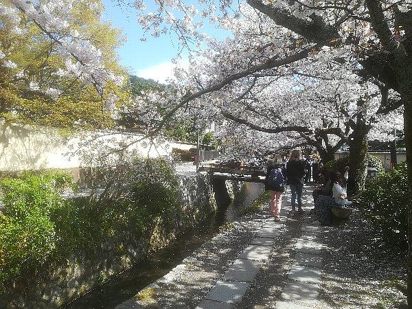tetsugakunomichi-kyoto-005.jpg