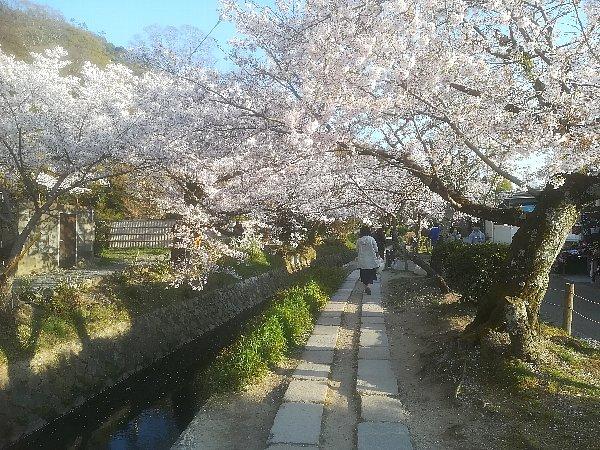 tetsugakunomichi-kyoto-072.jpg
