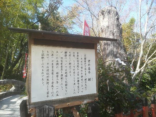 wakaoojijinjya-kyoto-005.jpg