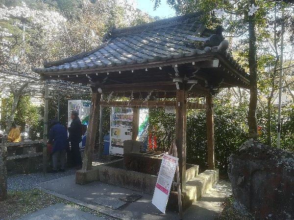 wakaoojijinjya-kyoto-009.jpg