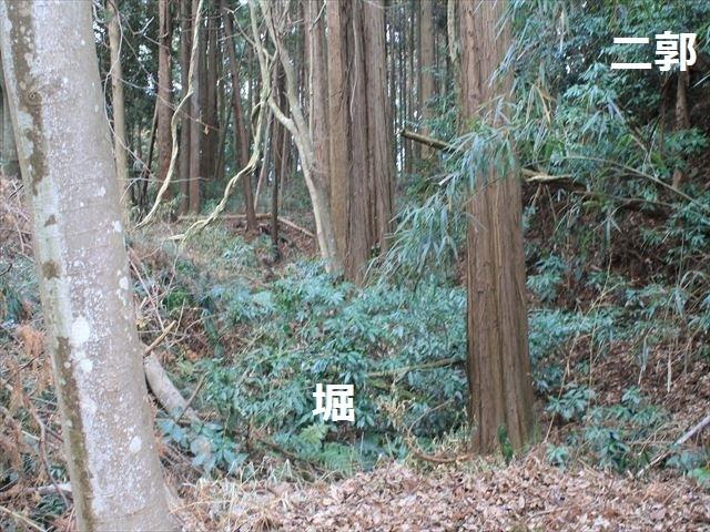 烟田_2800