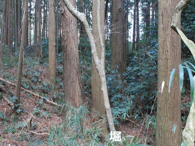 烟田_2802