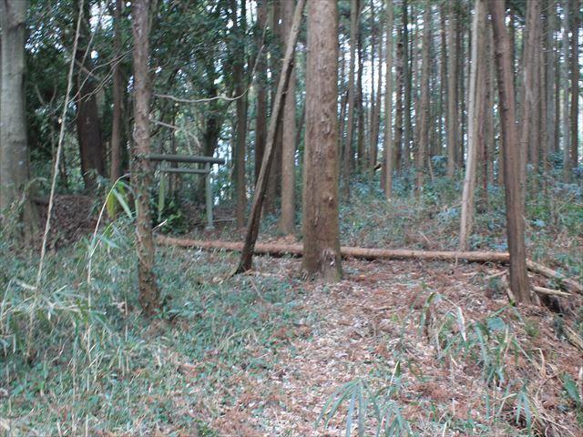 烟田_2803