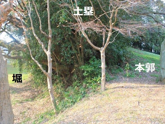 土気_3034
