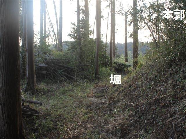 大椎_3070
