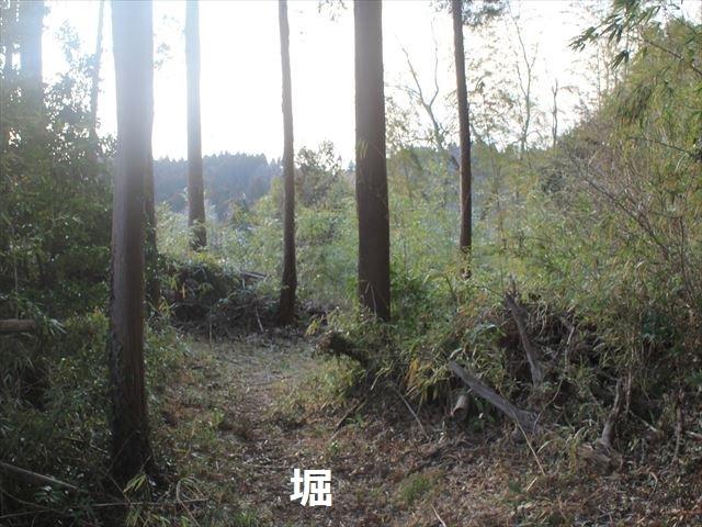 大椎_3071