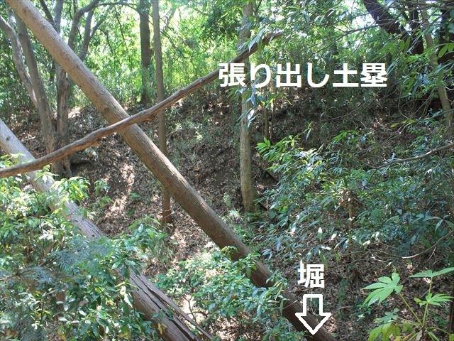 大庭IMG_3289