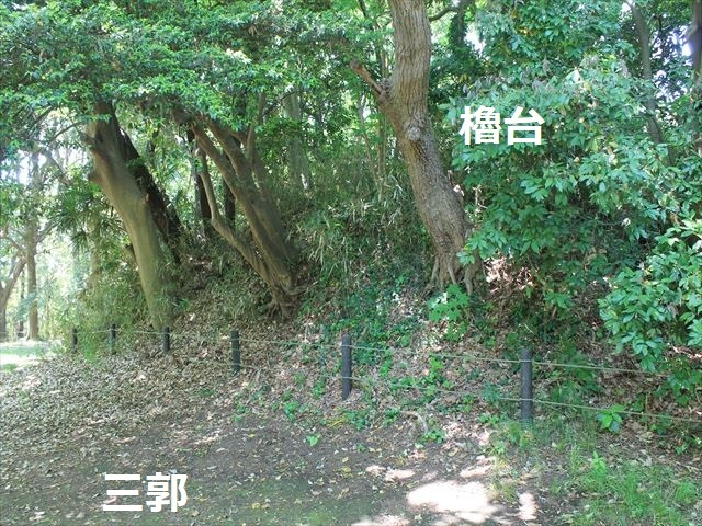 大庭IMG_3234