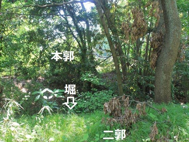 大庭IMG_3324