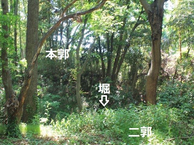 大庭IMG_3326