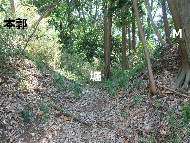 大庭IMG_3221