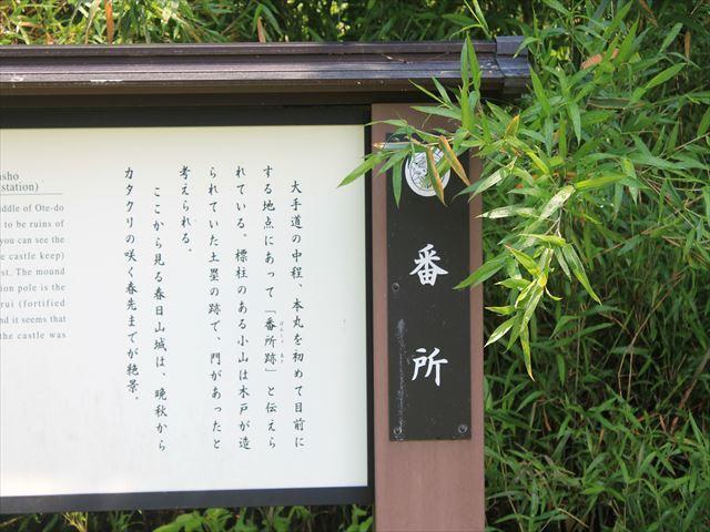 春日山IMG_3403