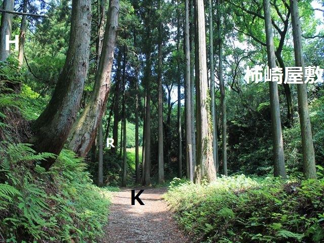 春日山IMG_3451