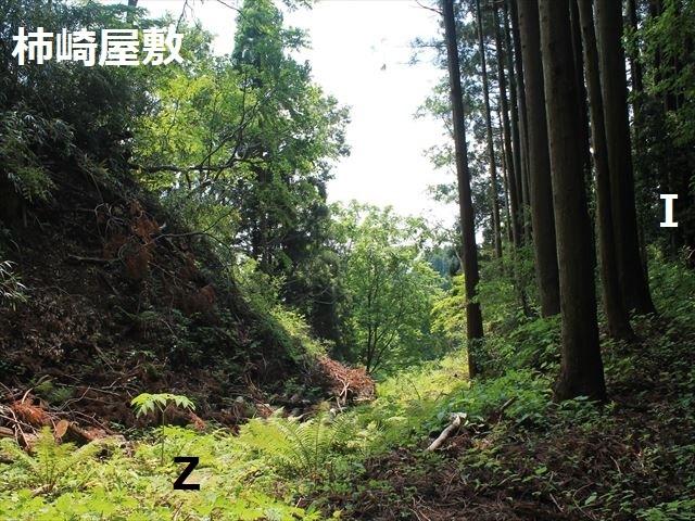 春日山IMG_3454