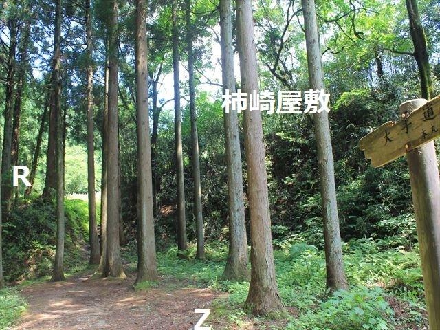 春日山IMG_3457