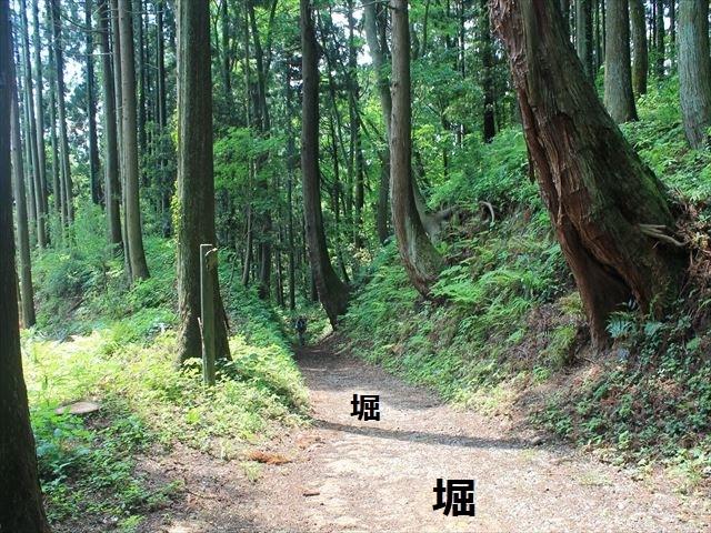 春日山IMG_3459