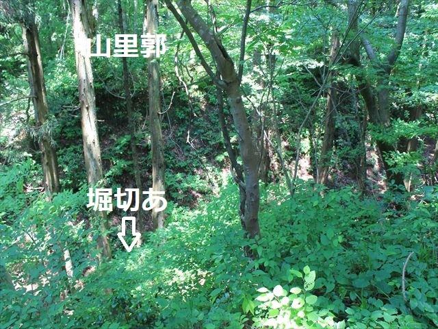 春日山IMG_3516