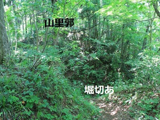 春日山IMG_3517