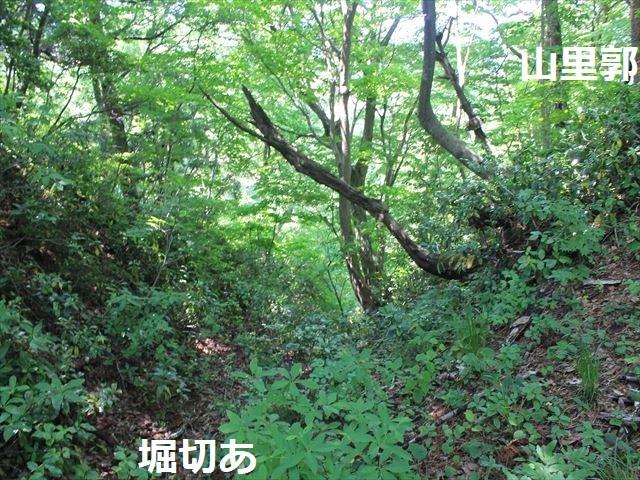 春日山IMG_3519