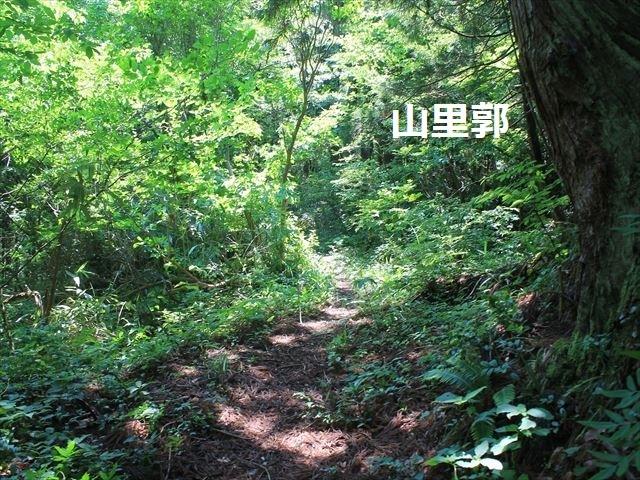 春日山IMG_3523