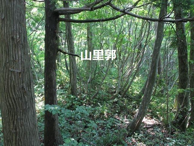 春日山IMG_3528