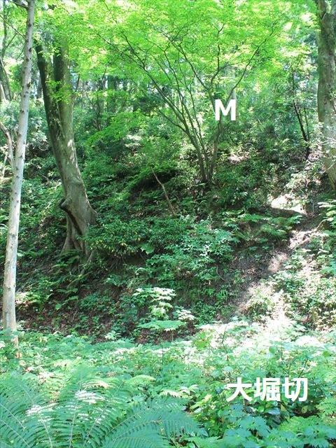 春日山IMG_3503