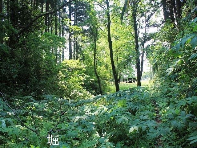 春日山IMG_3477