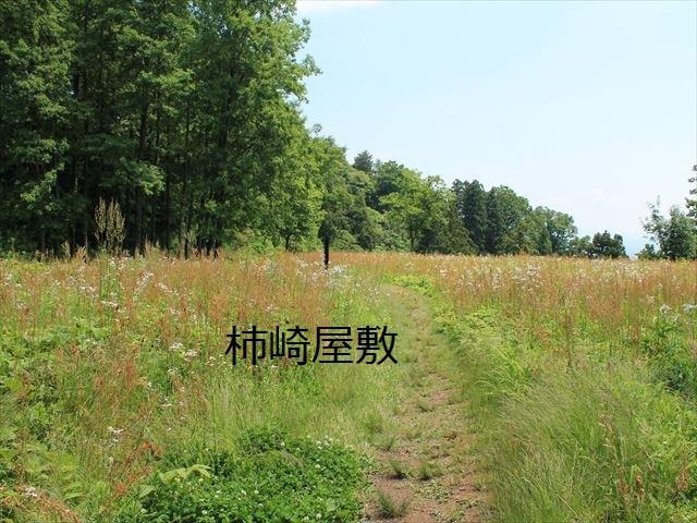 春日山IMG_3469