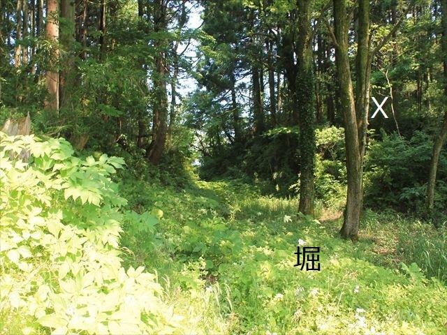 春日山IMG_3473
