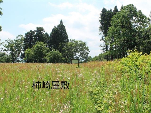 春日山IMG_3479