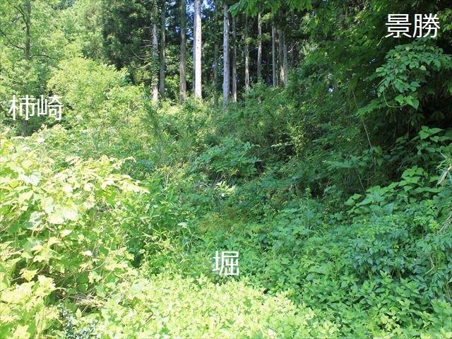 春日山IMG_3485