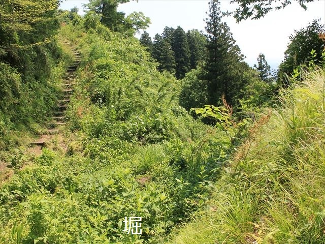 春日山IMG_3482