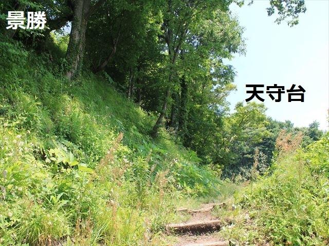 春日山IMG_3487
