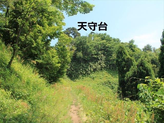 春日山IMG_3489