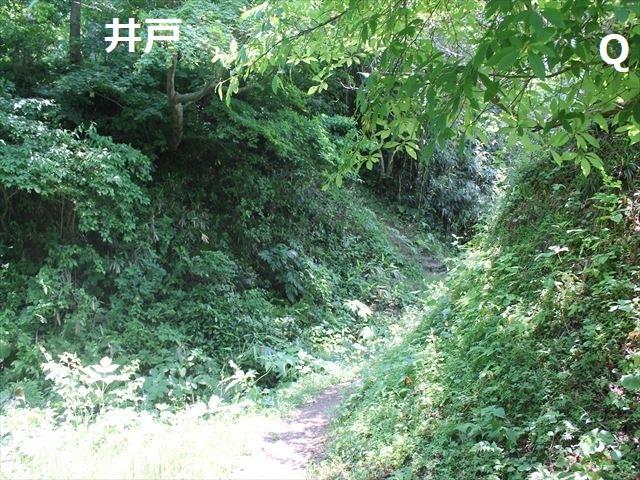 春日山IMG_3558