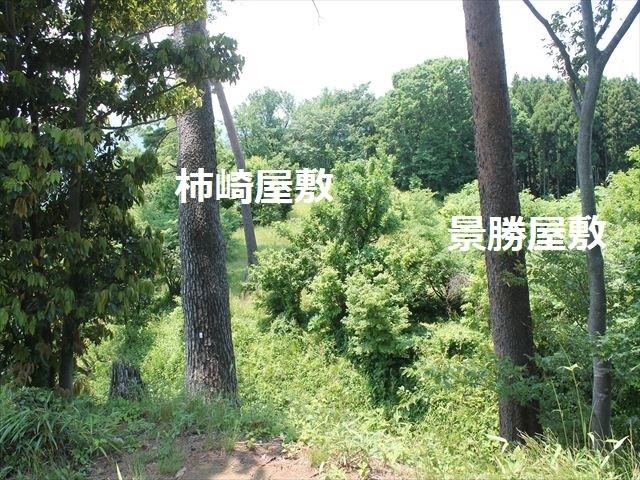 春日山IMG_3564