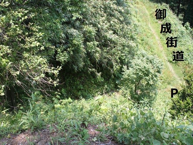 春日山IMG_3568