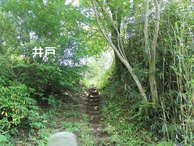 春日山IMG_3573